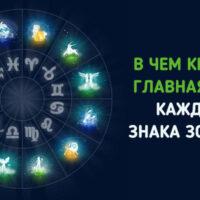 Вот в чем главная цель жизни каждого знака зодиака