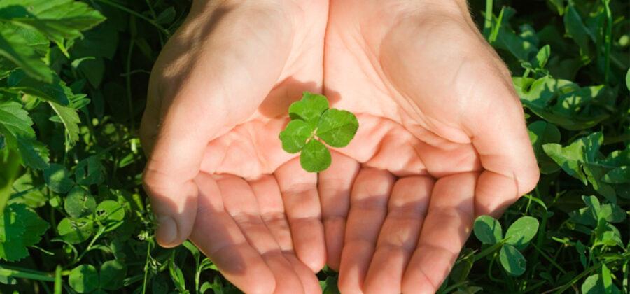 10 слов, которые притягивают удачу
