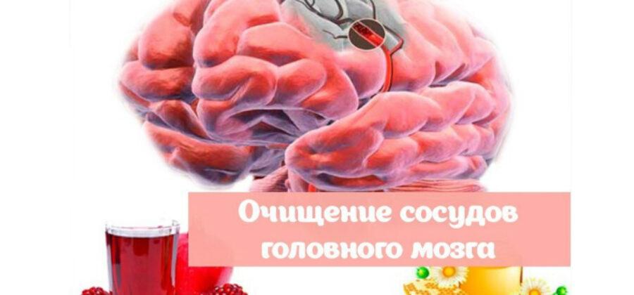 Очищение сосудов головного мозга: 5 лучших народных средств