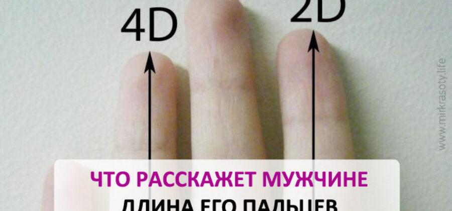 Вот что можно узнать о мужчине по длине его пальцев!