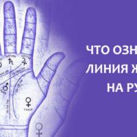 Что означает линия жизни на вашей руке? Читайте полную расшифровку!