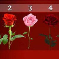 Тест: роза, которую вы выбрали расскажет, когда сбудется ваше желание!