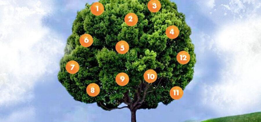 Тест: Дерево желаний. Загадайте желание, выберите фрукт и узнайте, что вас ждет!