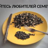 Бойтесь любителей семечек!